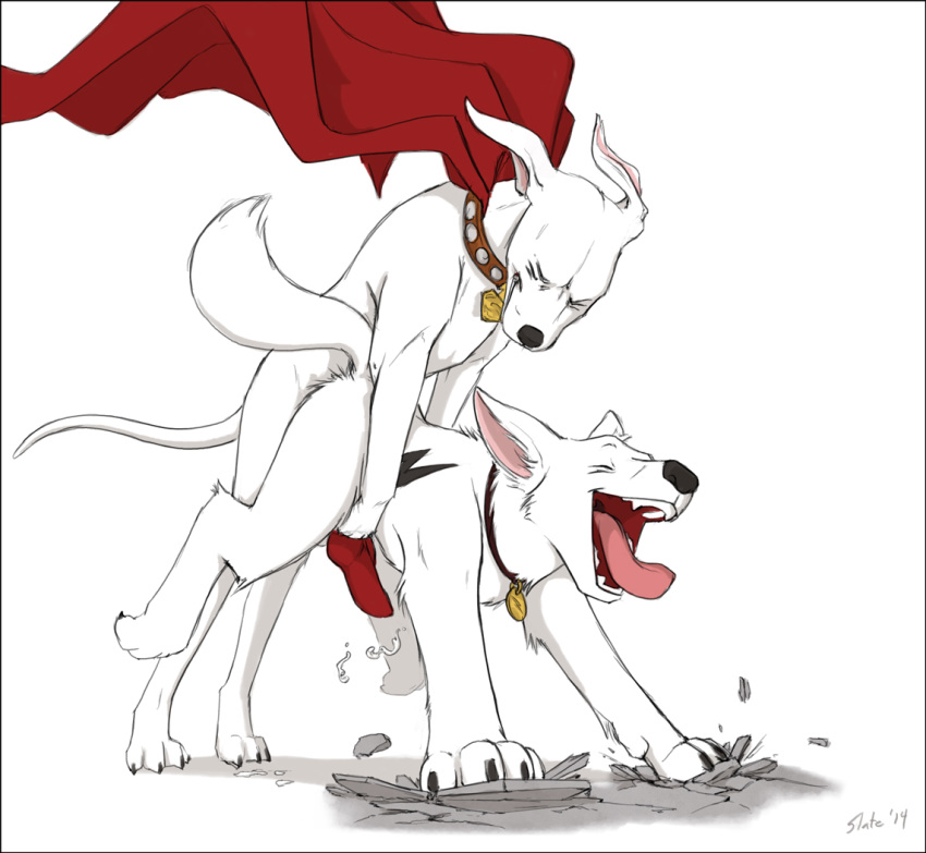 superdog the krypto tail terrier Dragon ball z androide 18
